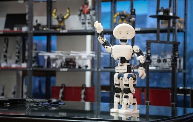 India gets its first 3D printed humanoid robot at Rs  1 5