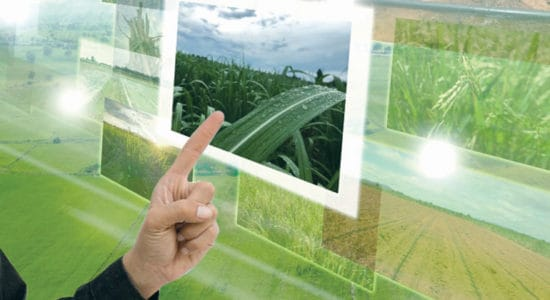 cropin and true digital solutions