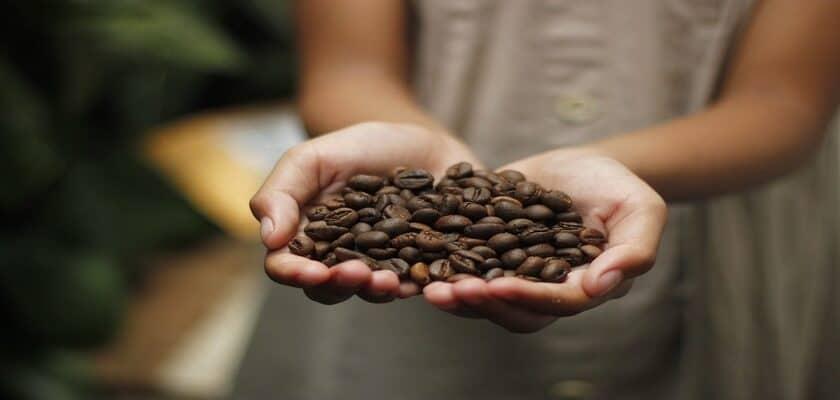 coffee farm blockchain